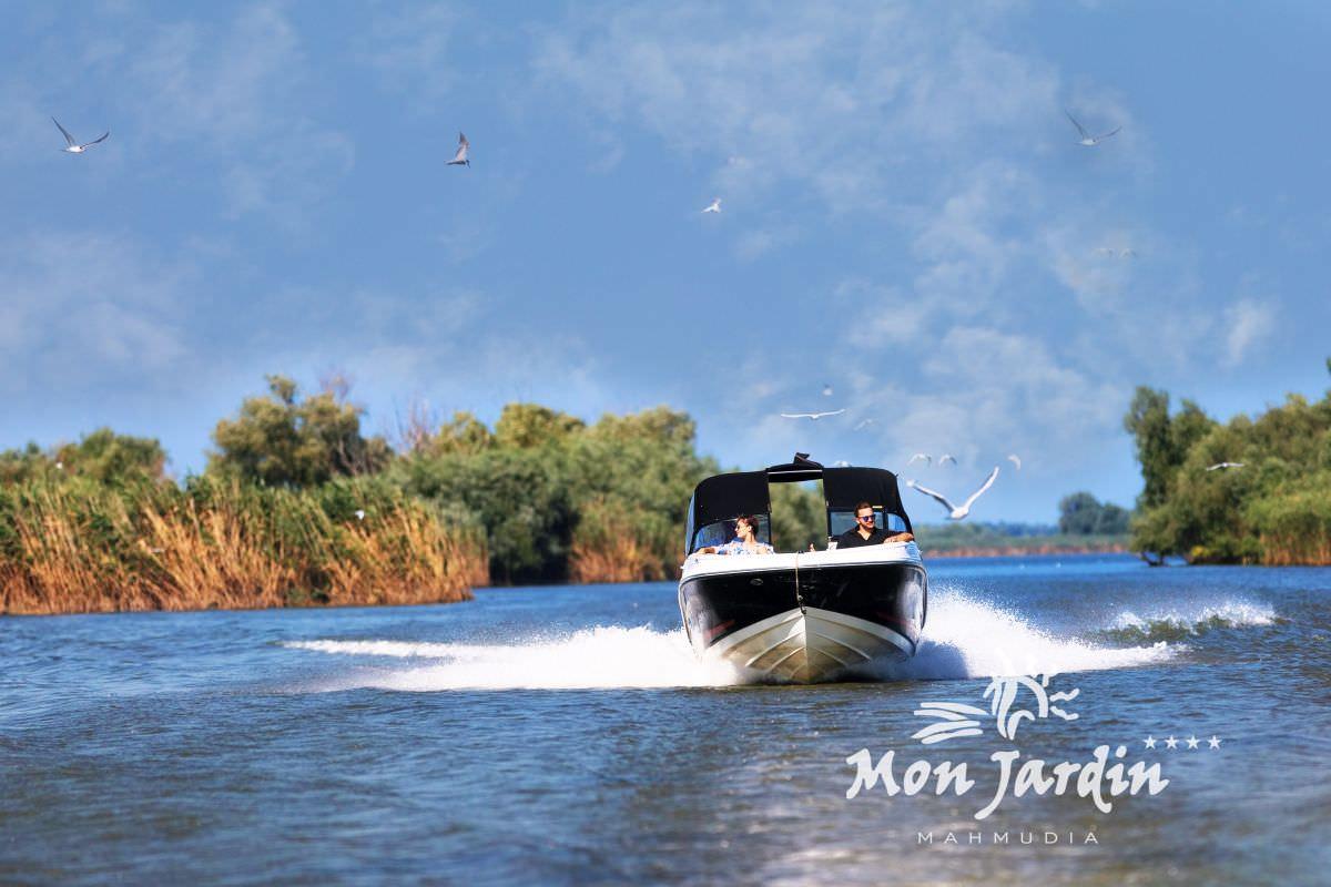 Excursii cu ambarcarcatiuni in Delta Dunarii